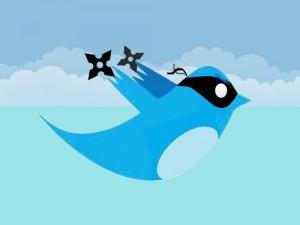 500x_Twitter-Ninja